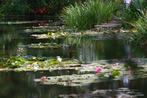 Monet's Garden Waterlillies Giverny, France